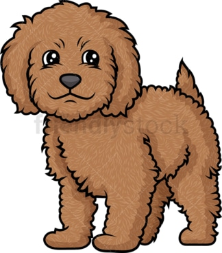 Cute labradoodle puppy. PNG - JPG and vector EPS (infinitely scalable).