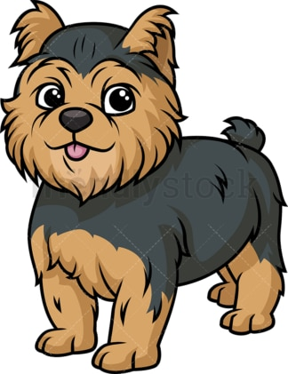 Cute yorkshire terrier puppy. PNG - JPG and vector EPS (infinitely scalable).