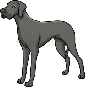 Majestic silver great dane. PNG - JPG and vector EPS (infinitely scalable).