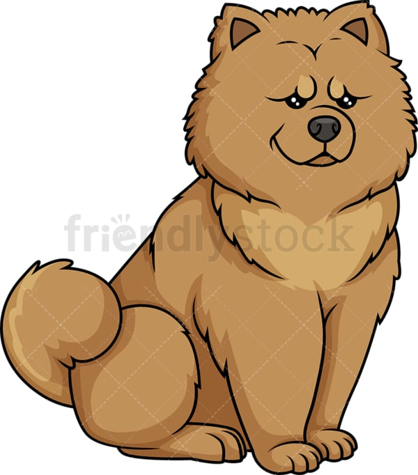 Obedient chow chow sitting. PNG - JPG and vector EPS (infinitely scalable).