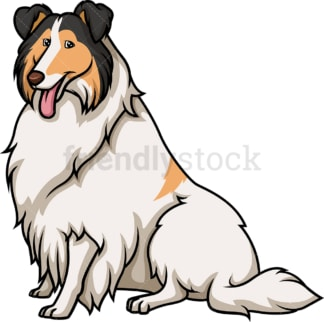 Obedient collie sitting. PNG - JPG and vector EPS (infinitely scalable).