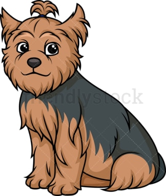 Obedient yorkshire terrier sitting. PNG - JPG and vector EPS (infinitely scalable).