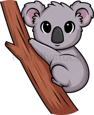 Chibi kawaii koala bear. PNG - JPG and vector EPS (infinitely scalable).