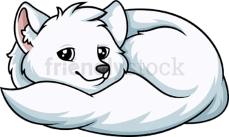 Curled up arctic fox. PNG - JPG and vector EPS (infinitely scalable).