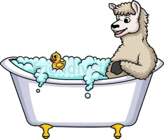 Llama having a bath. PNG - JPG and vector EPS (infinitely scalable).