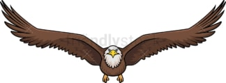 Front view bald eagle flying. PNG - JPG and vector EPS (infinitely scalable).