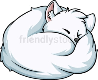 Sleeping arctic fox. PNG - JPG and vector EPS (infinitely scalable).