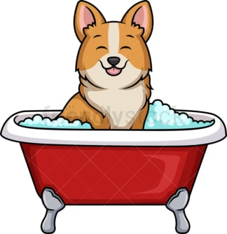 Corgi dog having a bath. PNG - JPG and vector EPS (infinitely scalable). Image isolated on transparent background.