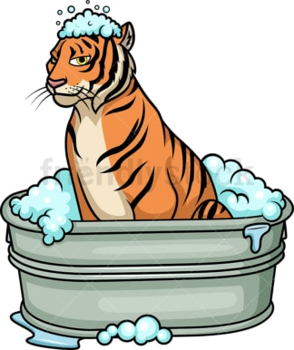 Tiger having a bath. PNG - JPG and vector EPS (infinitely scalable).