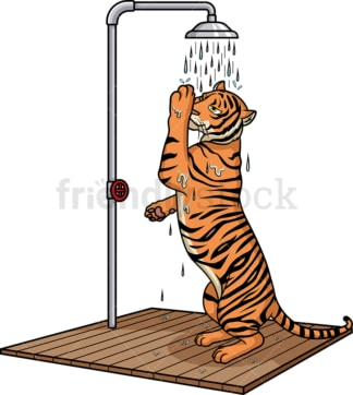 Tiger showering. PNG - JPG and vector EPS (infinitely scalable).