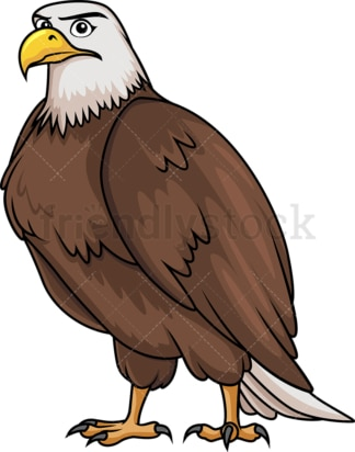 Brave bald eagle. PNG - JPG and vector EPS (infinitely scalable).