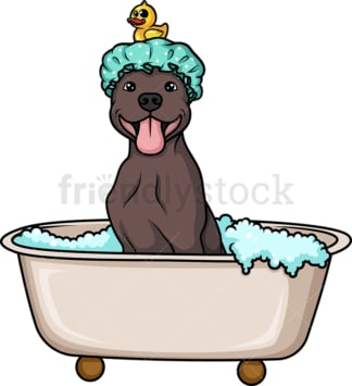 Cute dog in a bathtub. PNG - JPG and vector EPS (infinitely scalable). Image isolated on transparent background.