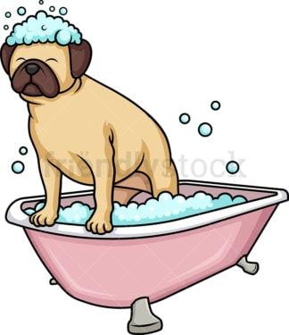 Pug dog having a bath. PNG - JPG and vector EPS (infinitely scalable). Image isolated on transparent background.