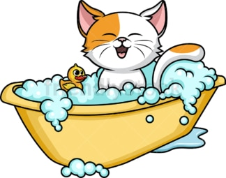 Cat having a bath. PNG - JPG and vector EPS (infinitely scalable).