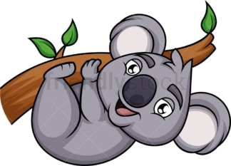 Koala hanging from tree branch. PNG - JPG and vector EPS (infinitely scalable). Image isolated on transparent background.
