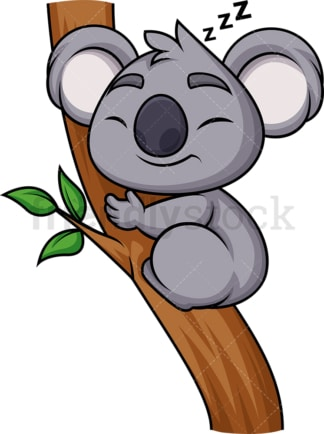 Koala sleeping. PNG - JPG and vector EPS (infinitely scalable). Image isolated on transparent background.