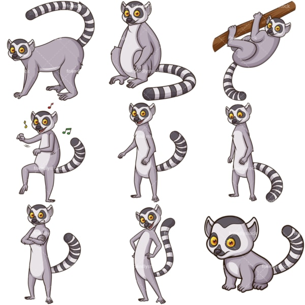 Madagascar lemurs. PNG - JPG and infinitely scalable vector EPS - on white or transparent background.