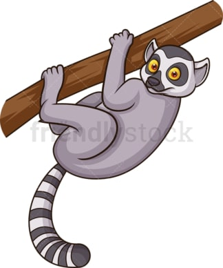 Wild lemur. PNG - JPG and vector EPS (infinitely scalable).