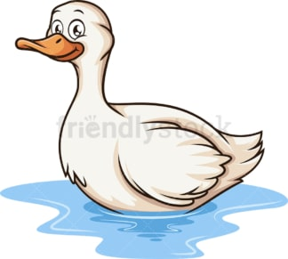 Swimming duck. PNG - JPG and vector EPS (infinitely scalable).
