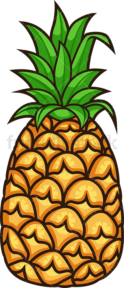 Tropical pineapple. PNG - JPG and vector EPS file formats (infinitely scalable). Image isolated on transparent background.