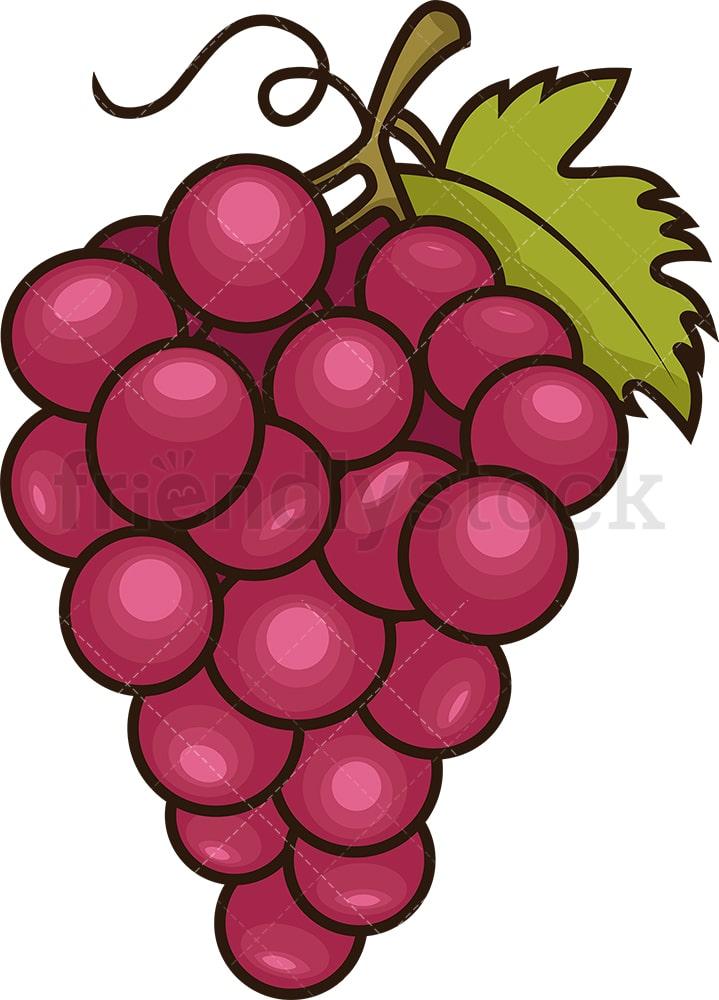 Red Grapes Cartoon Vector Clipart - FriendlyStock