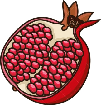 Open pomegranate cut in half. PNG - JPG and vector EPS file formats (infinitely scalable). Image isolated on transparent background.