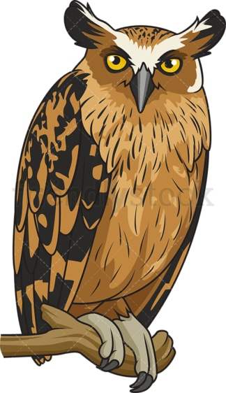 Buffy fish owl. PNG - JPG and vector EPS file formats (infinitely scalable). Image isolated on transparent background.