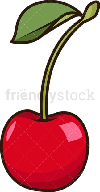 Single cherry. PNG - JPG and vector EPS file formats (infinitely scalable). Image isolated on transparent background.