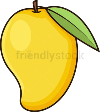 Mango fruit. PNG - JPG and vector EPS file formats (infinitely scalable). Image isolated on transparent background.