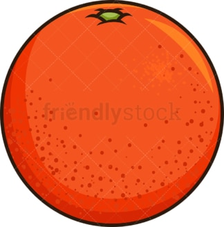 Blood orange. PNG - JPG and vector EPS file formats (infinitely scalable). Image isolated on transparent background.