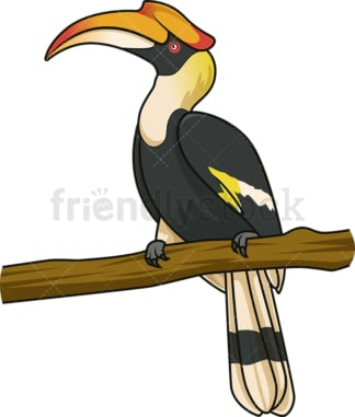 Tropical hornbill. PNG - JPG and vector EPS (infinitely scalable).