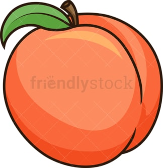 Fresh peach. PNG - JPG and vector EPS file formats (infinitely scalable). Image isolated on transparent background.