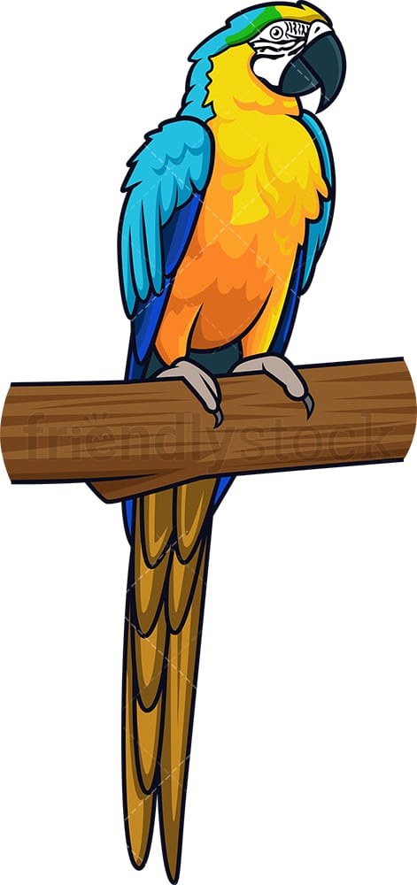 Blue and yellow macaw. PNG - JPG and vector EPS (infinitely scalable).