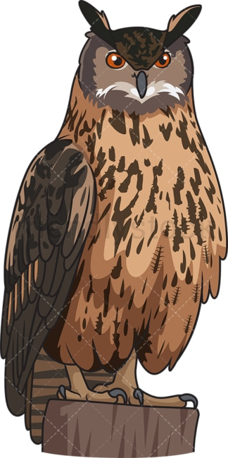 Eurasian eagle owl. PNG - JPG and vector EPS file formats (infinitely scalable). Image isolated on transparent background.