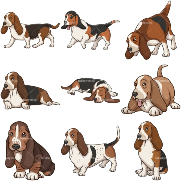 Cartoon basset hound dogs. PNG - JPG and infinitely scalable vector EPS - on white or transparent background.