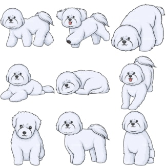 Cartoon bichon frise dogs. PNG - JPG and infinitely scalable vector EPS - on white or transparent background.