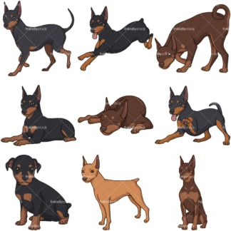 Cartoon mini pinscher dogs. PNG - JPG and infinitely scalable vector EPS - on white or transparent background.