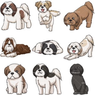 Cartoon shih tzu dogs. PNG - JPG and infinitely scalable vector EPS - on white or transparent background.