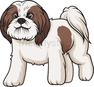 Shih tzu walking. PNG - JPG and vector EPS (infinitely scalable).