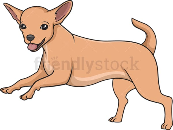 Chihuahua running. PNG - JPG and vector EPS (infinitely scalable).