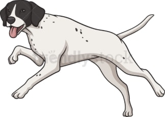 English pointer running. PNG - JPG and vector EPS (infinitely scalable).