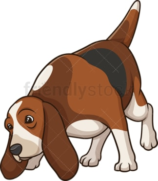 Basset hound sniffing. PNG - JPG and vector EPS (infinitely scalable).
