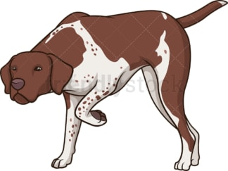 Liver white pointer sniffing. PNG - JPG and vector EPS (infinitely scalable).