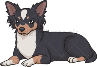 Black tri chihuahua lying down. PNG - JPG and vector EPS (infinitely scalable).