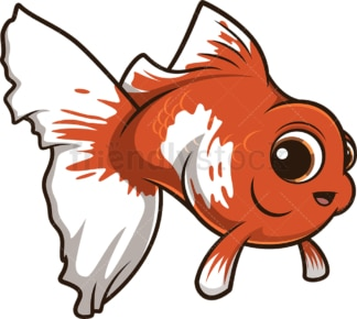Cute chubby fish. PNG - JPG and vector EPS (infinitely scalable).