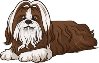 Shih tzu lying down. PNG - JPG and vector EPS (infinitely scalable).