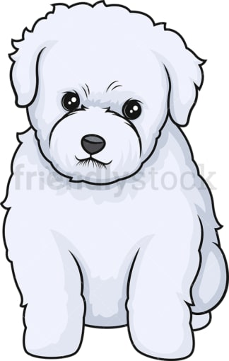 Cute bichon frise puppy. PNG - JPG and vector EPS (infinitely scalable).