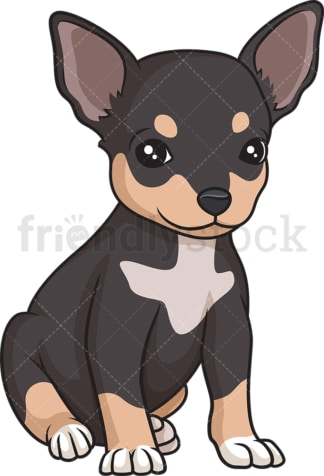 Cute chihuahua puppy. PNG - JPG and vector EPS (infinitely scalable).
