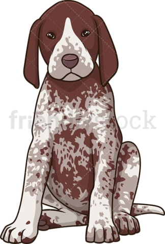 Cute pointer puppy. PNG - JPG and vector EPS (infinitely scalable).
