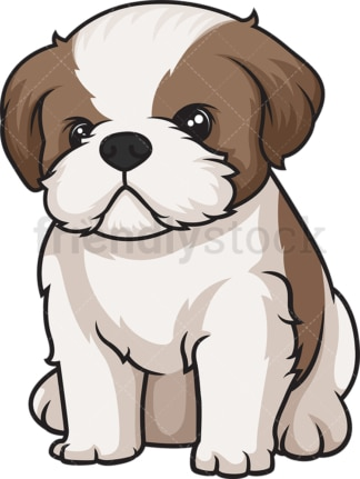 Cute shih tzu puppy. PNG - JPG and vector EPS (infinitely scalable).